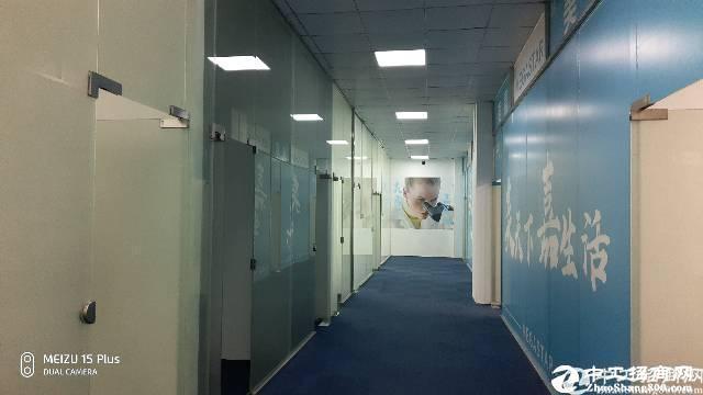 西丽阳光工业区新出楼上1350平无公摊厂房出租