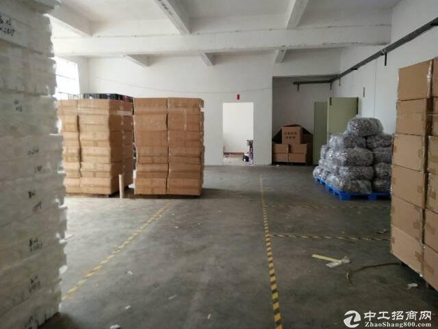 坑梓金沙原房东两层小独院2400平带装修厂房招租