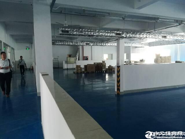 深圳石岩塘头大型工业园1800实际面积