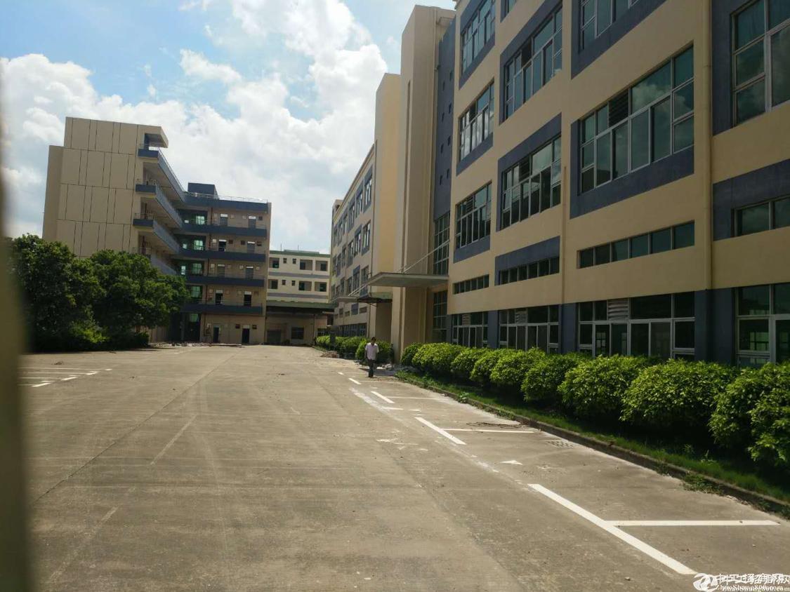 坪山区生物医疗基地独栋厂房招租,5400平方