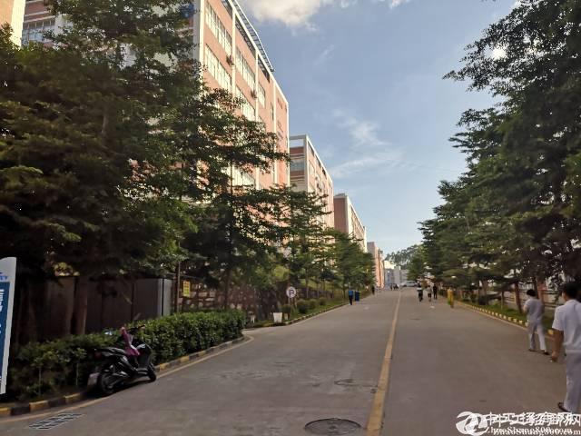 宝安高新园区厂房出租5000平方两层可分
