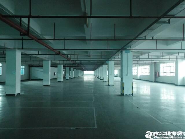 西丽白芒关口,大型工业园独栋1-6层13800平米厂房招租,可分层租