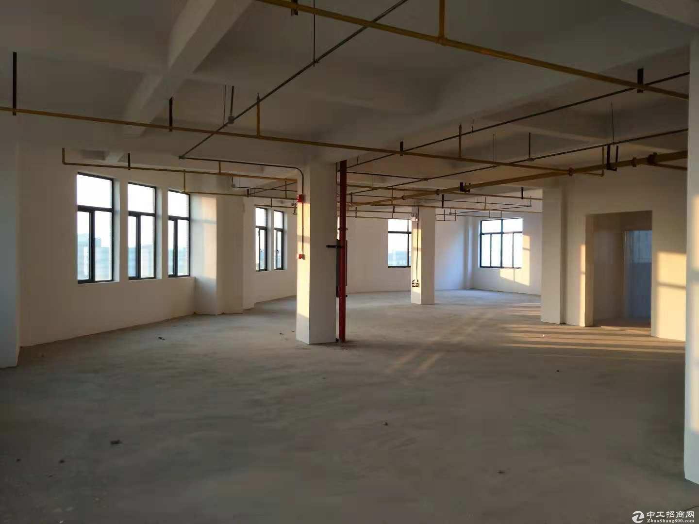 蔡甸常福工业园7000平米标准厂房,配套全可分租