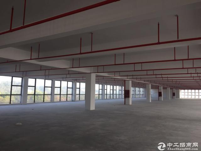 广东江门恩平恩城工业区原发楼上1520平精装修招租