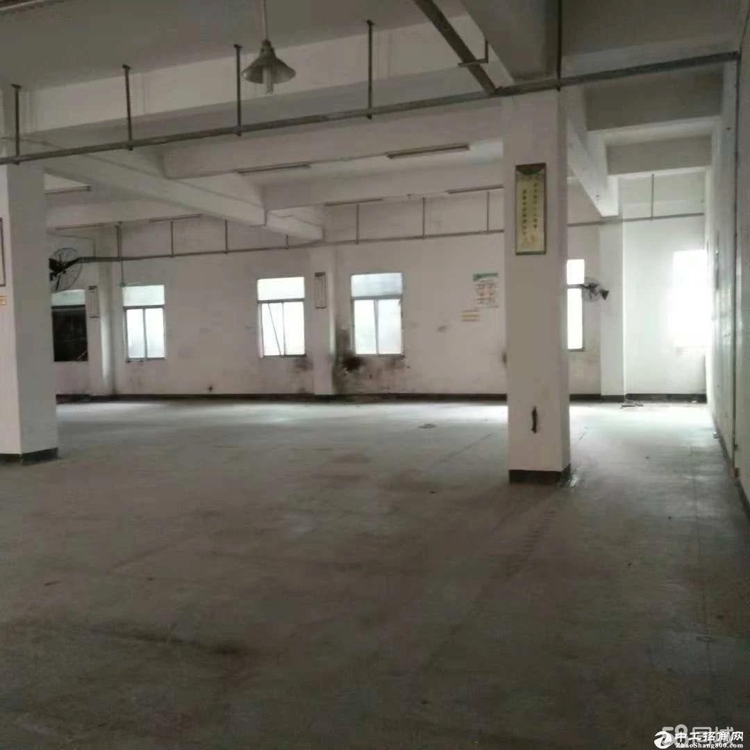 横岗大康沙河路附近新出一楼700平红本高5米 厂房出租