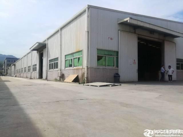 坪山碧岭红本钢构厂房5500平方8米高出租可做仓库