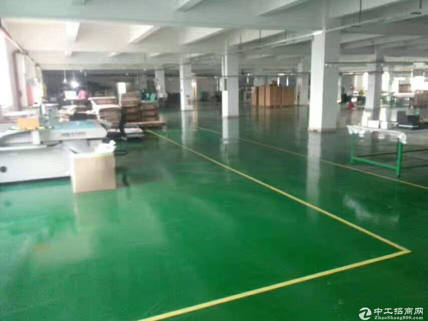 龙岗花园式园区独栋厂房5400平方平百万豪华装修出租