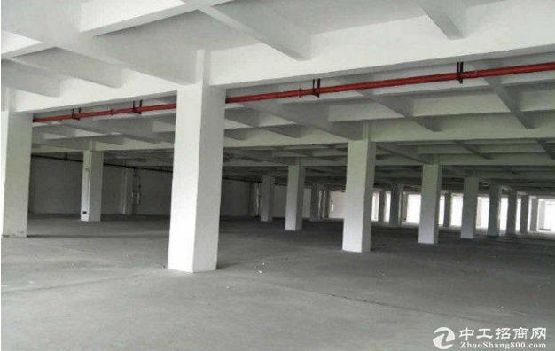 东环路独门独院厂房2200平方价格优惠