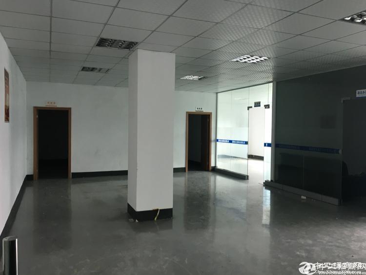 横岗安良原房东带精装修1300平米厂房出租可分租