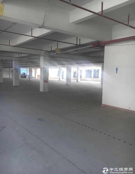 横岗楼上带精装修1600平米标准厂房招租