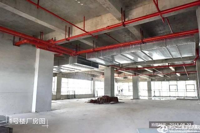 东莞目前四大园区 可按揭刚建好的一手厂房50年不动产