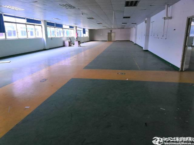 平湖独门独院厂房2500平方,100平方起租