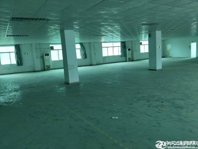 横岗横岗新出独院楼上分租900平独院空地超大形象好