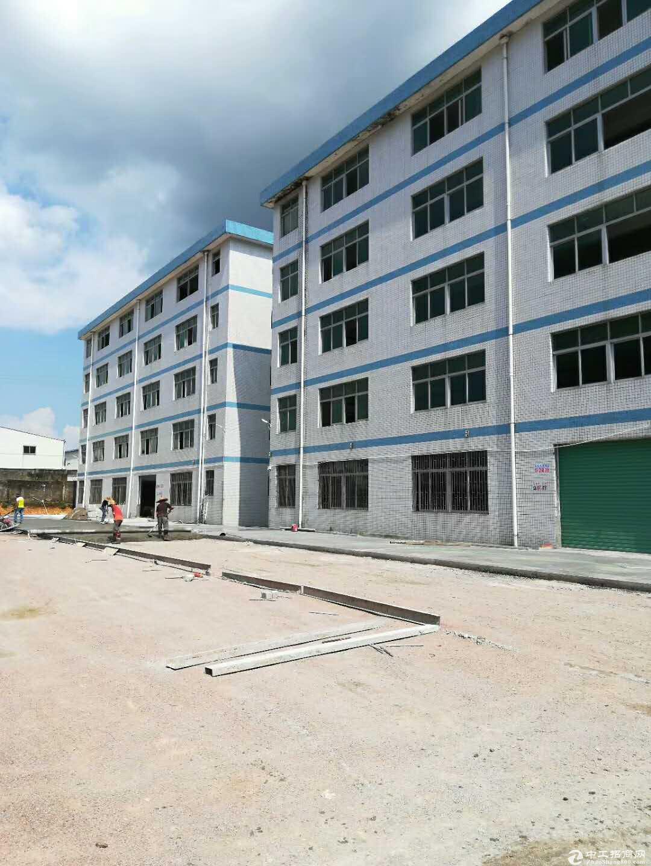 秋长西湖原房东1楼1350平方出租带装修