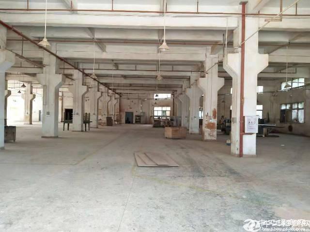 新圩独门独院标准厂房7900平米