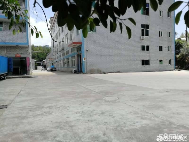 原房东三楼带办公室装修750平方业主急租