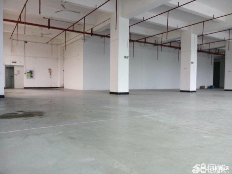 近华南城电子产业园4楼1100平厂房,带装修有货梯
