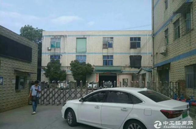 平湖辅城坳新出一楼800平带装修办公室