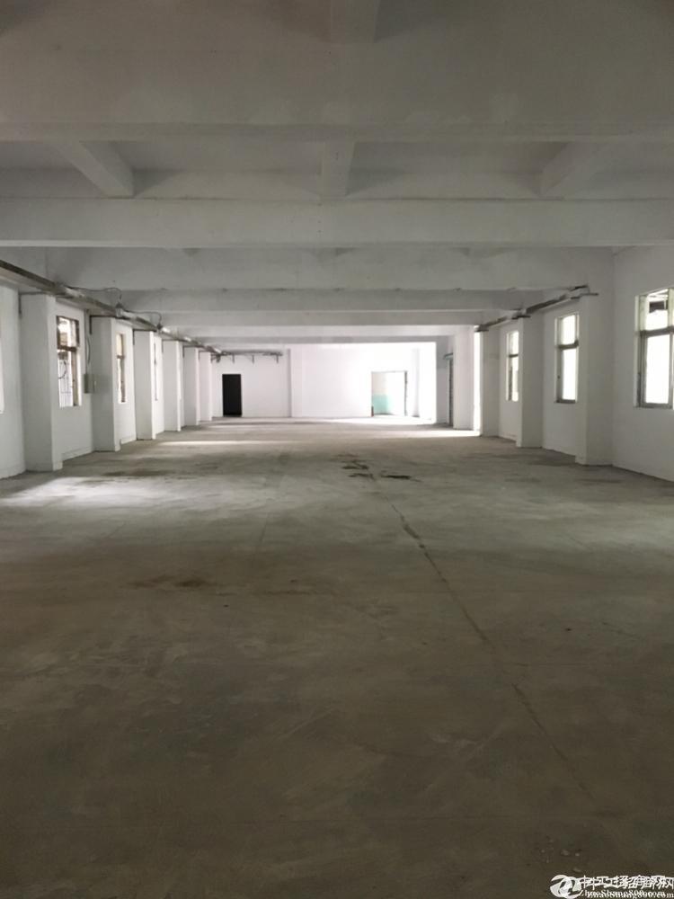 坪山碧岭独门独院厂房5000平厂房出租有标准和钢