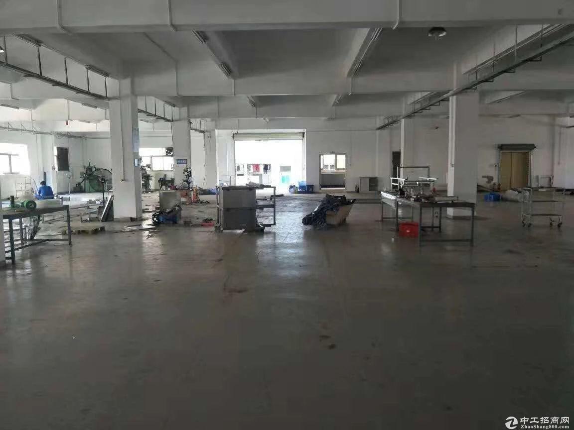 坪山中心一楼1350平米厂房出租实际面积 高度5米