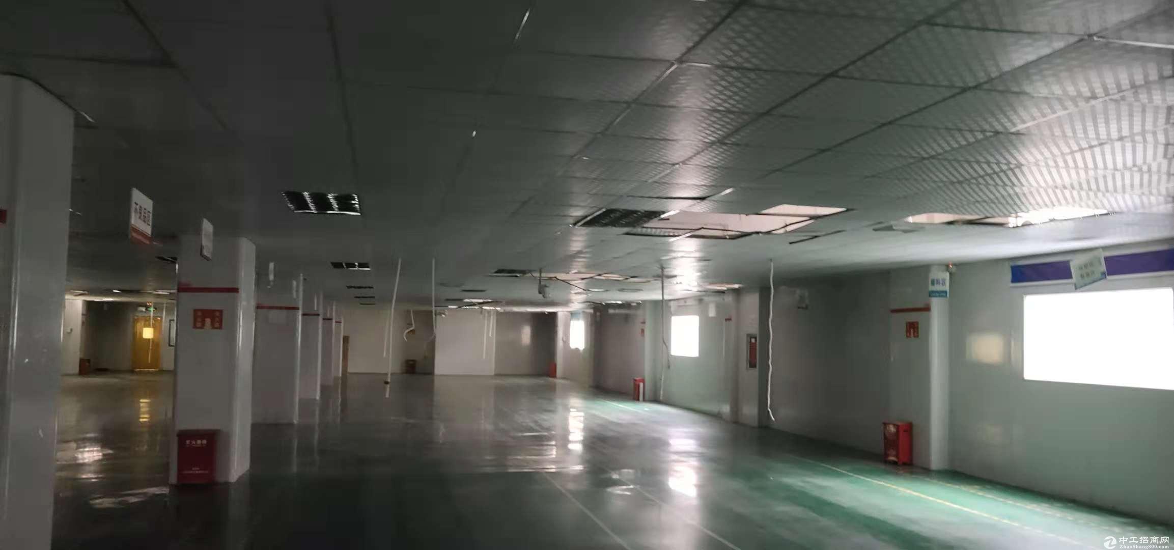 横岗 六约华润万家附近楼上精装电商办公仓库245平米招租
