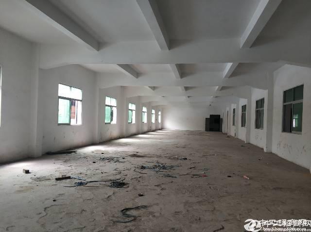 横岗四联社区一楼厂房空出800平层高五米适合重型加工报价25