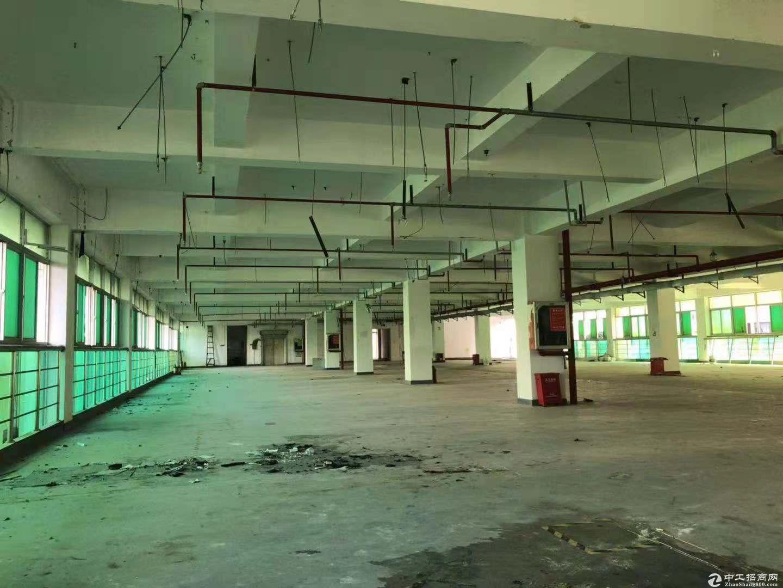 坪山坑梓龙田工业区新空出一、二楼3500平方可分层