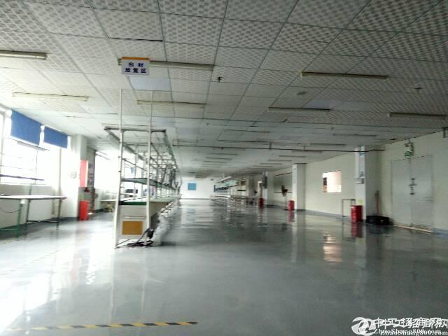 坑梓龙田高新科技园分租红本厂房三楼820平