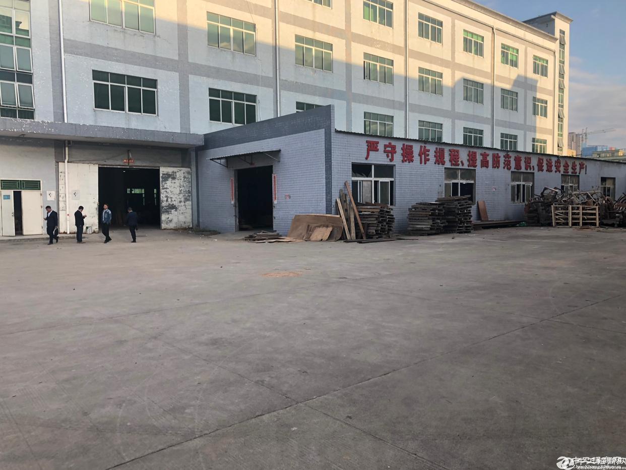 坪山天虹附近厂房一楼2400平方米高5米可分租