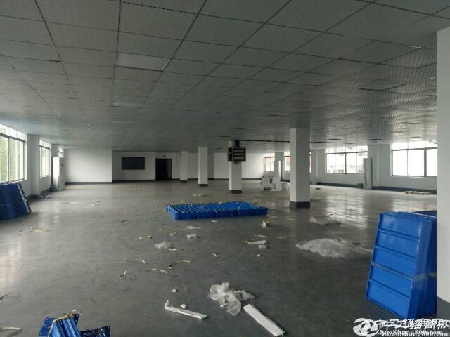 沙井大王山标准工业区新出楼上带装修厂房420平
