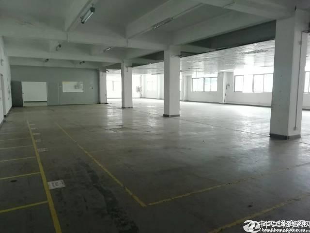 石岩北环楼上厂房550平米招租,可分