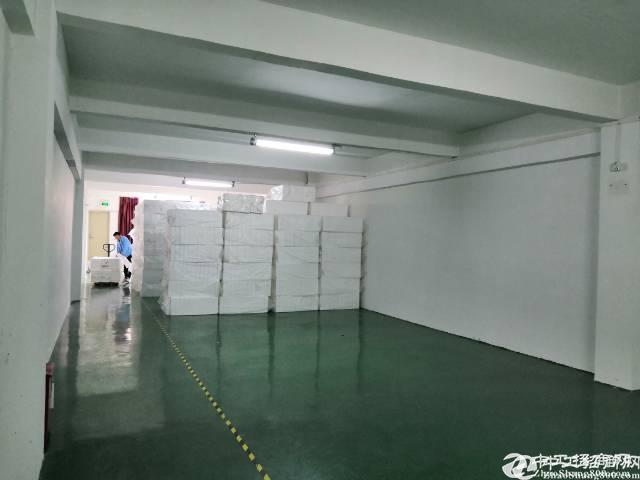 横岗六约宸和路三楼500平方带装修地坪漆