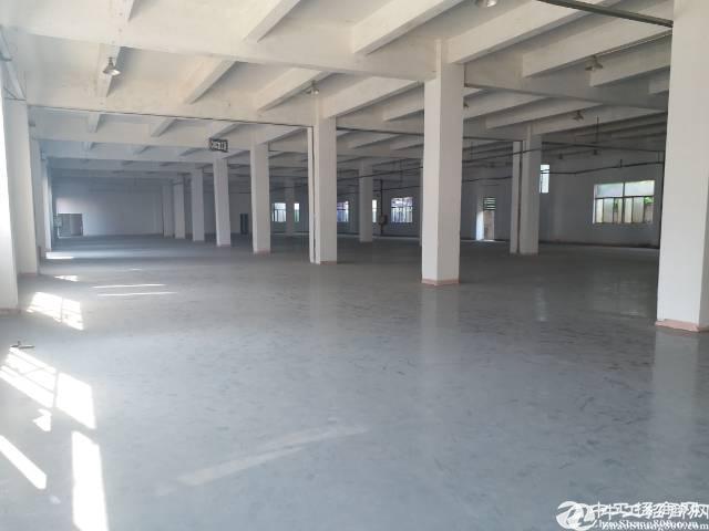 35000平方独院,原房东低价出租