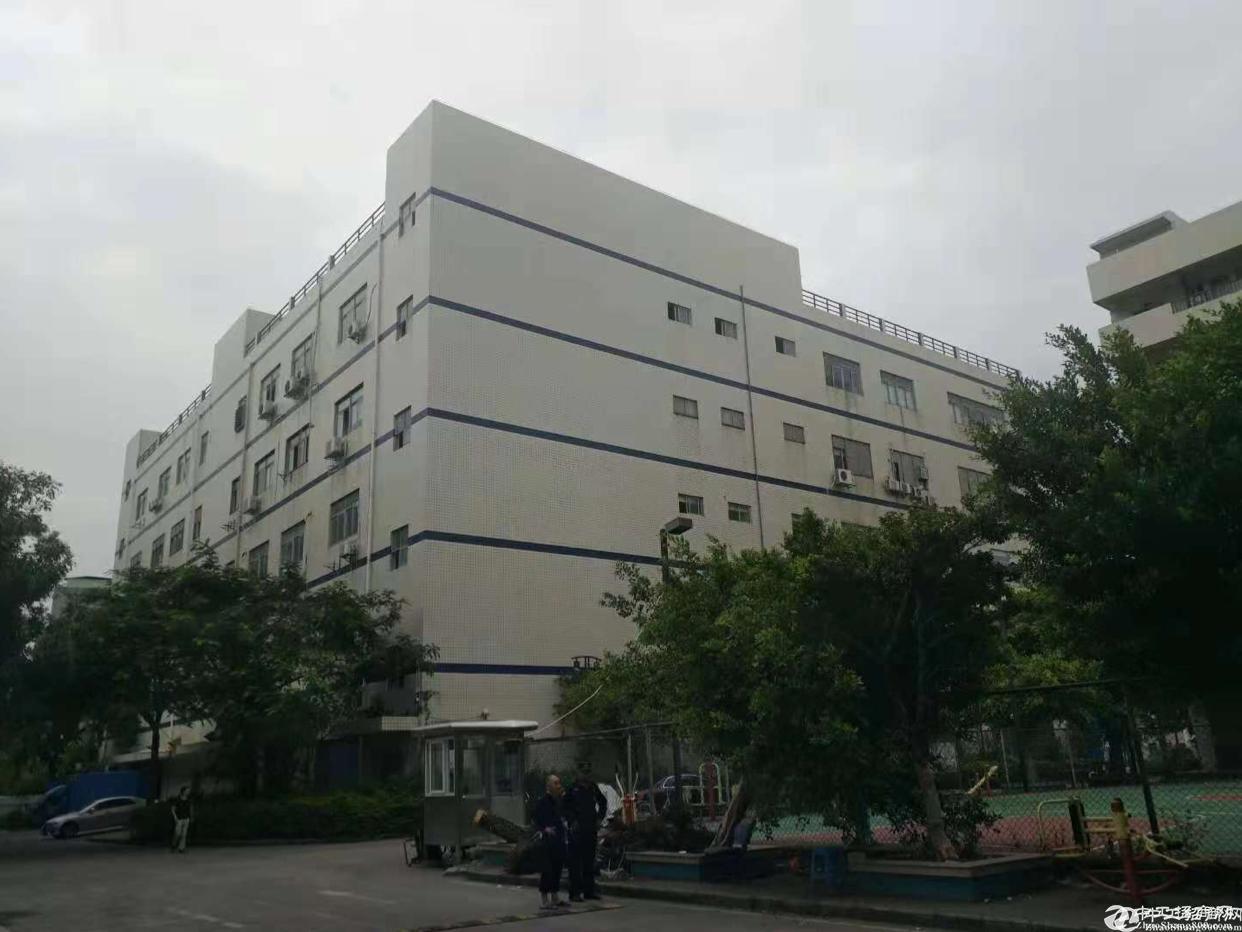 石岩水田石龙仔一楼170平米厂房出租,适合做仓库