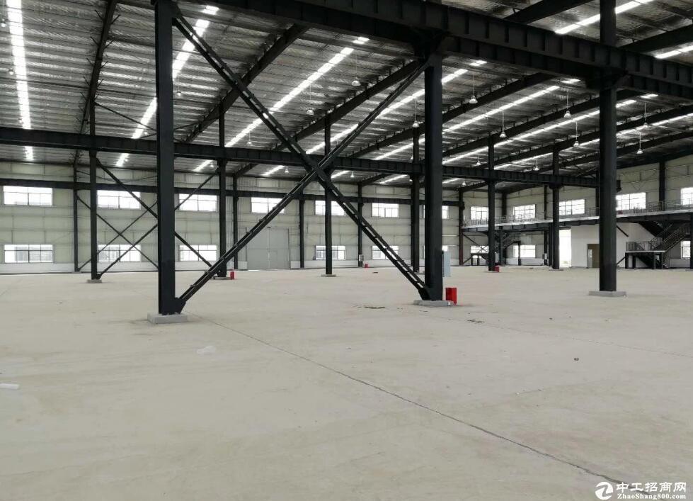 汉南6300平标准钢构厂房,可分租.
