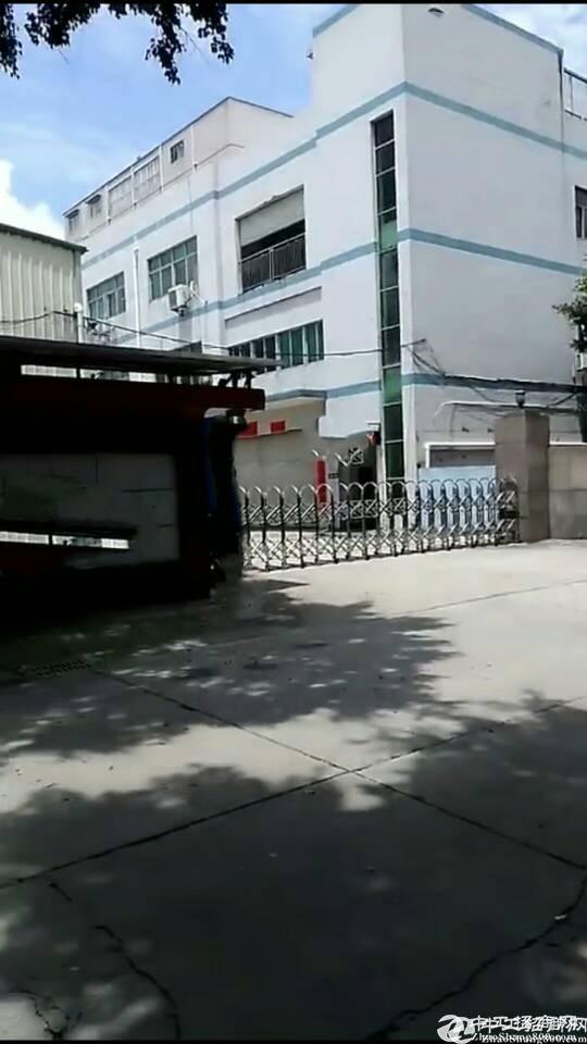 红本厂房出售观澜红本独门独院小面积厂房,适合投资