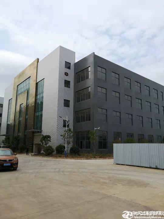 阳逻开发区4100方独栋厂房,手续配套全-图2