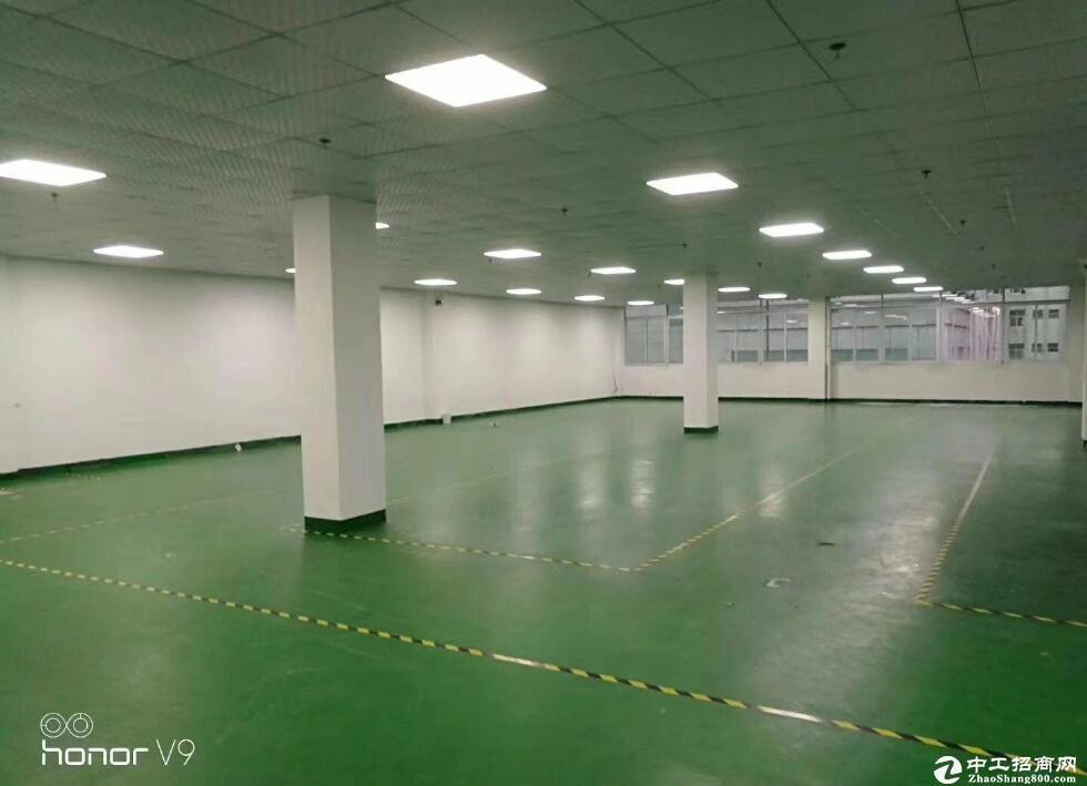 直租文昌大道附近厂房,1000平米特价,医疗器械优先
