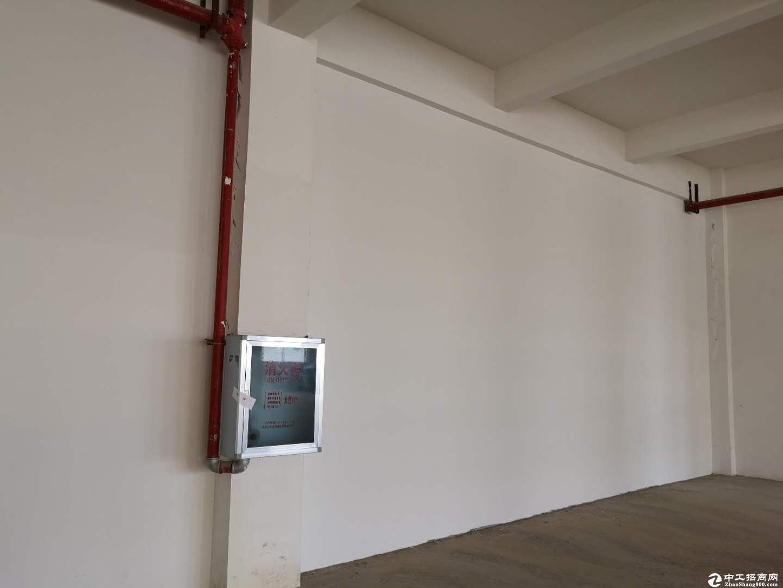 新洲阳逻开发区2000平米,工业厂房特惠出租层高5米