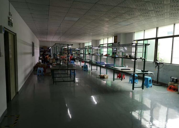 龙岗龙西红本标准厂房1-5层共3500平实用面积15元一平出租