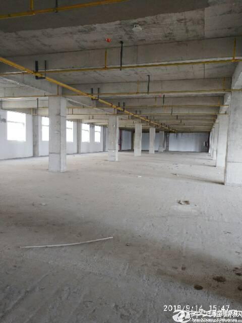 家山医药健康园1000平米厂房出售,可办分栋