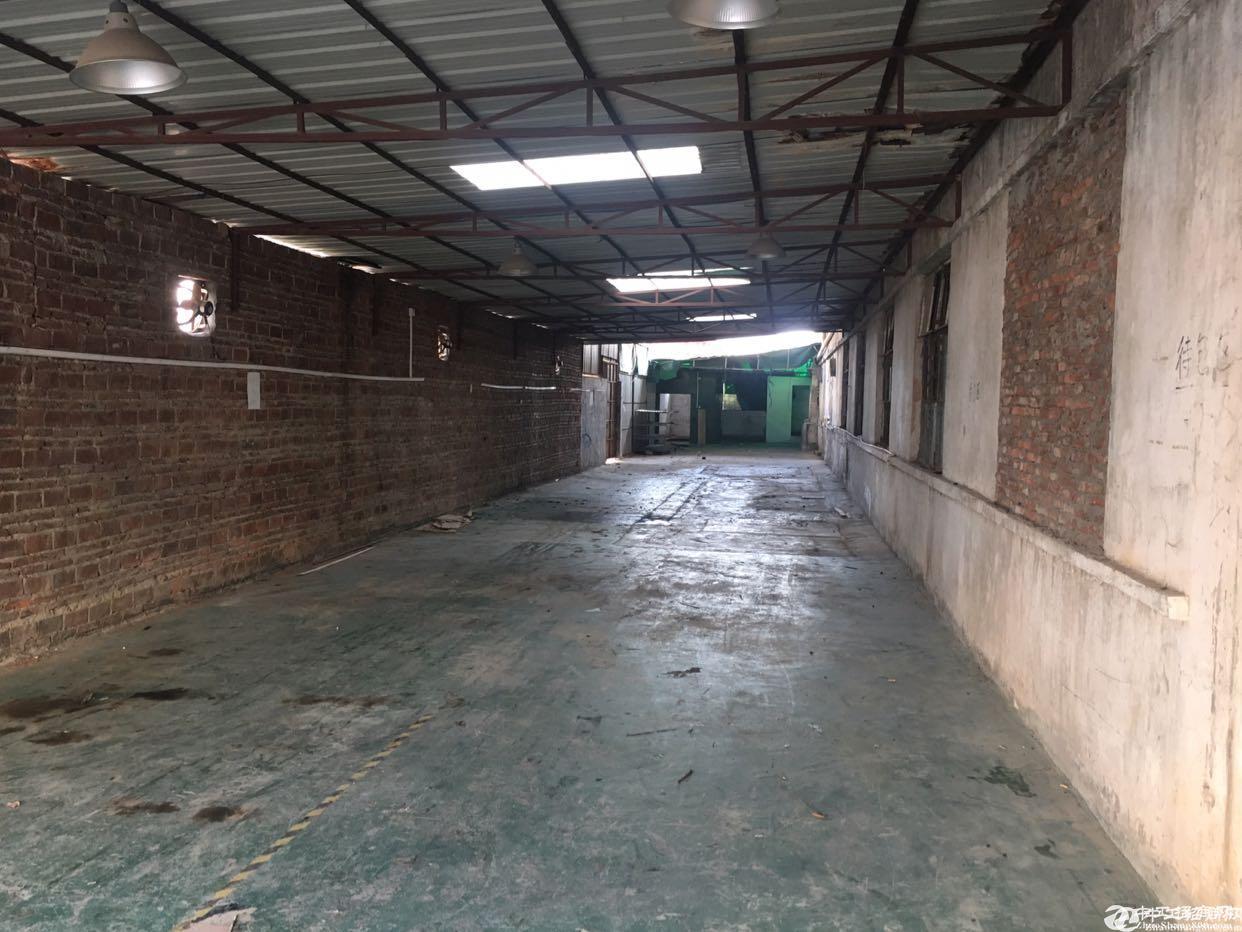 坪山六联宝山工业区350平铁皮房15元一平出租