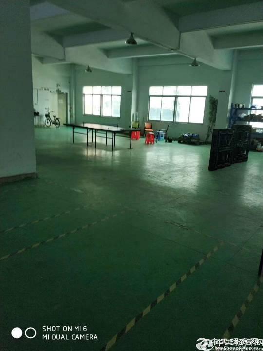 坂田上雪新原房东厂房700平米实用率超高