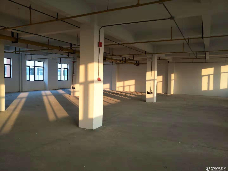 黄陂空港2000平米标准厂房,配套宿舍食堂齐全.