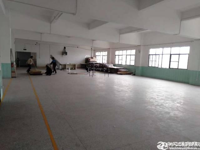 清溪镇三中新出花园式厂房1-2层8000平方独门独院出租