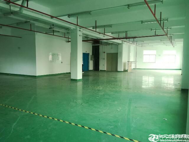 石岩独门独院原房东1~5层3000平方厂房出租
