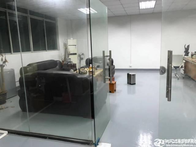 坂田上雪科技园400平米带精装修办公厂房