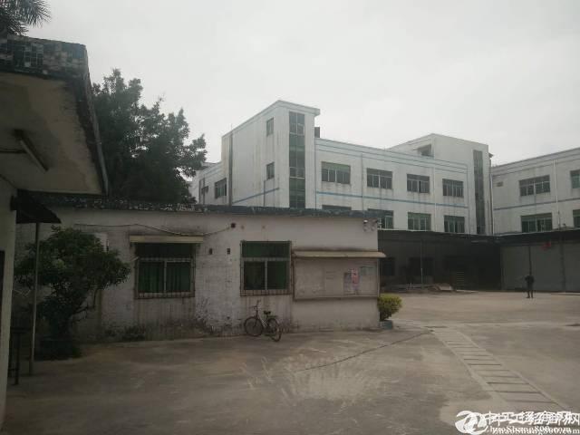公明原房东独院厂房3层6000平方低价出租