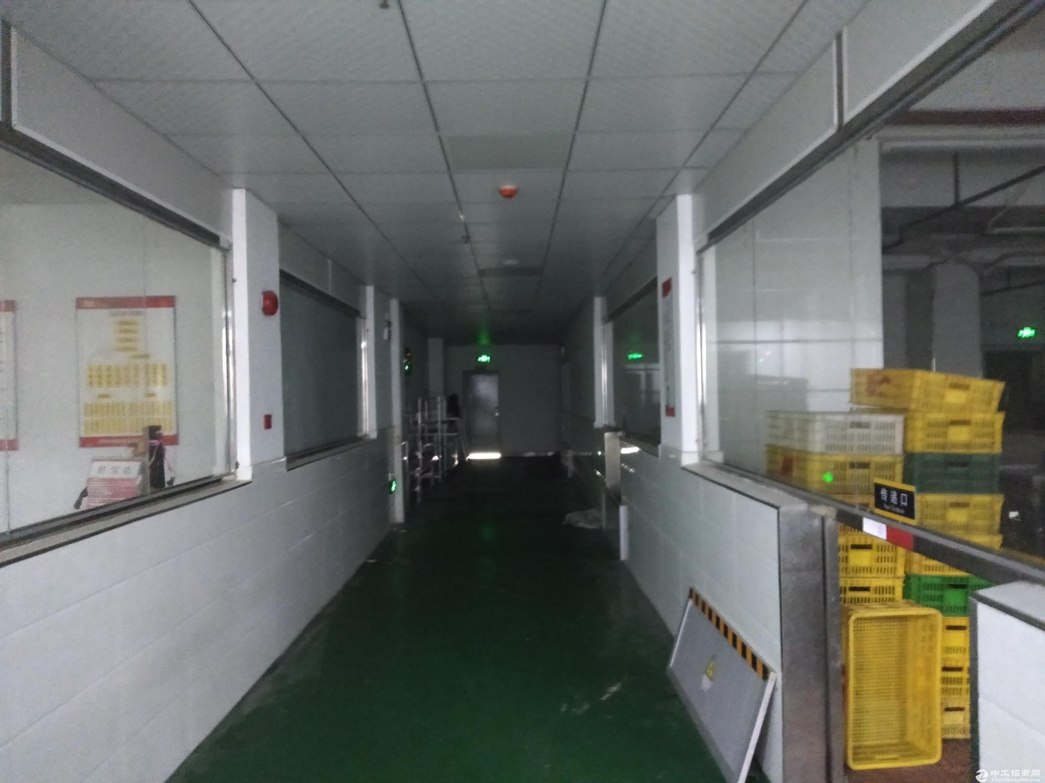 坂田办公室+仓库出租,大小面积可以分租!