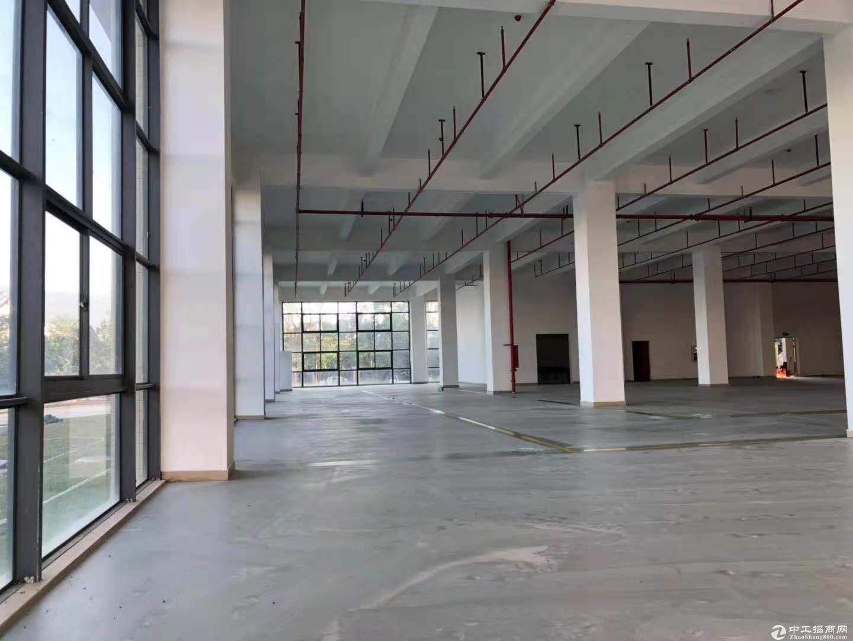 坪山 三洋湖工业区 厂房及仓库 1100平米